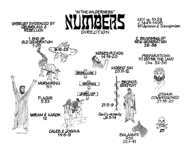 book of numbers outline